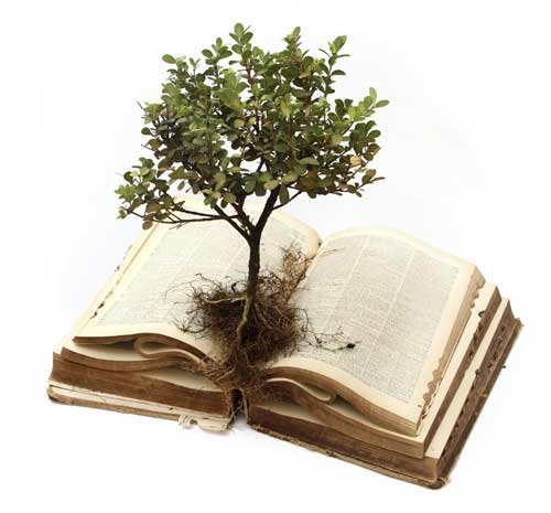 image of book and tree